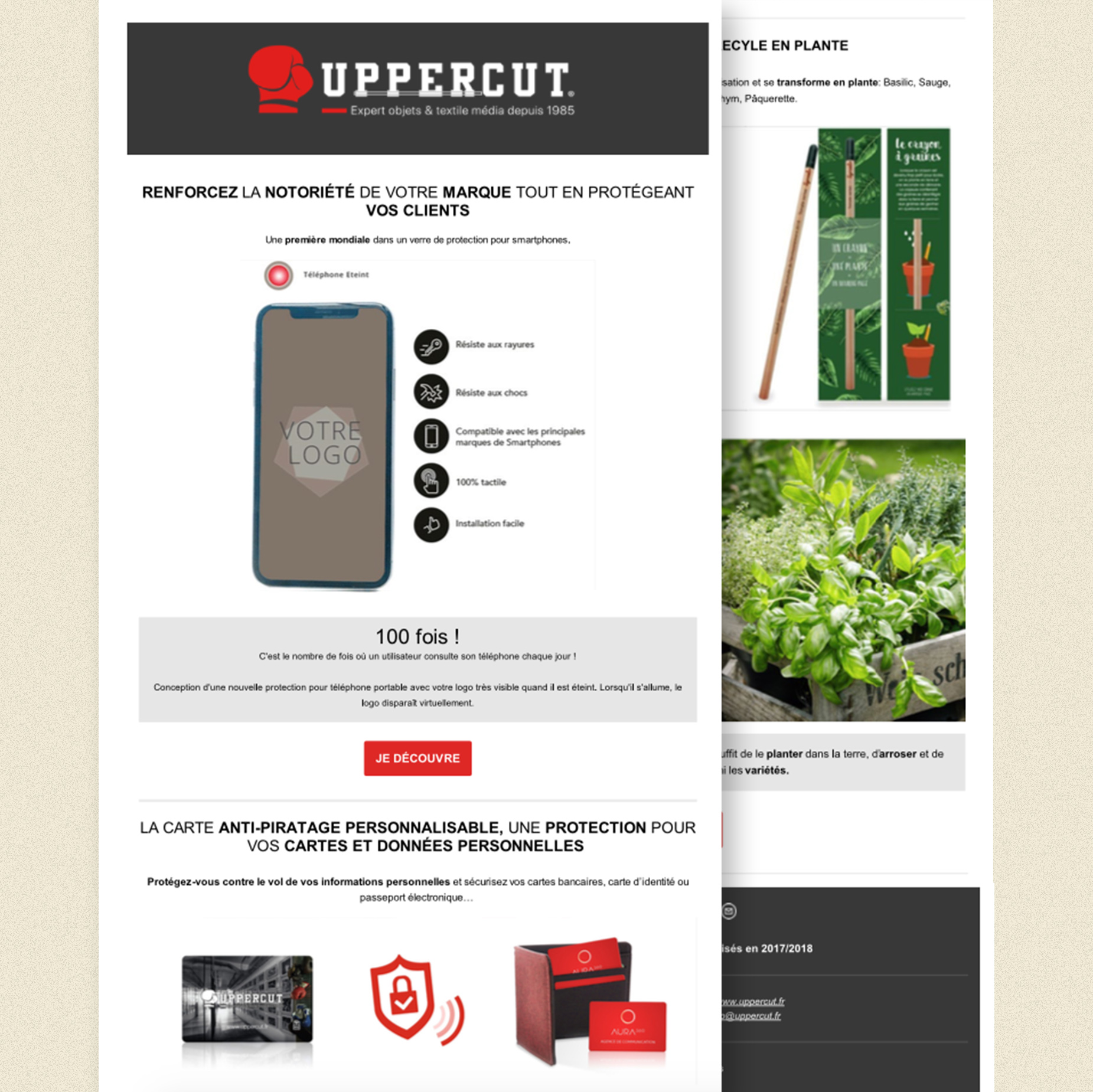 newsletter uppercut